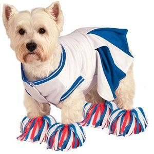 Deluxe Cheerleader Pet Dog Costume